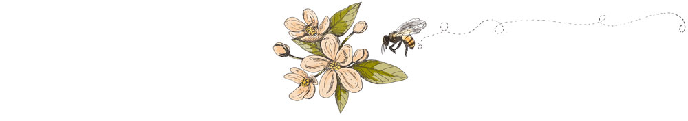 Illustrated Flower and Bee